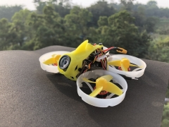 FullSpeed TinyLeader HD Brushless Whoop 2-3S 25-600mw VTX 1103motor Turtle V2
